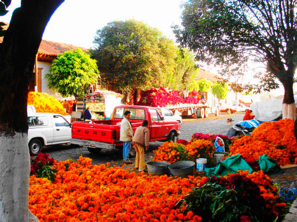 Marigolds (zempoalxochitl, flower of the dead) and purple mota for sale in the Patzcuaro market for Day of the Dead.